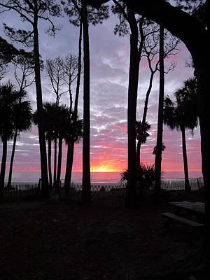 Photograph - Hunting Island Sunrise by Joel Deutsch