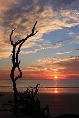 Hunting Island Sunrise Art Print by Mountains to the Sea Photo