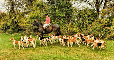 Foxhound Photograph - Huntsman And The Hounds by Olahs Photography