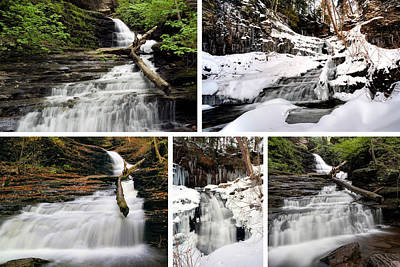 Photograph - Huron Falls In Every Season by Gene Walls