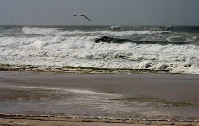 Photograph - Hurricane Isaac by Debra Forand