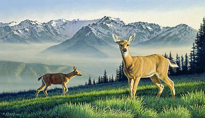 Olympic National Park Painting - Hurricane Ridge-blacktails by Paul Krapf