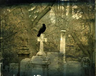 Birds In Graveyard Photograph - Hush by Gothicrow Images