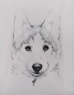 Husky Print by Rachel Christine Nowicki