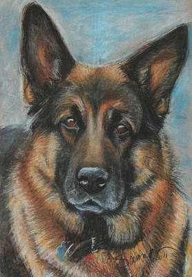 Hussler-german Shepherd Dog Art Print by Sciandra