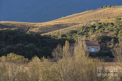 Roquebrun Photograph - Hut by Iksung N