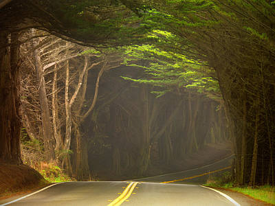 Photograph - Hwy 1 by Leland D Howard