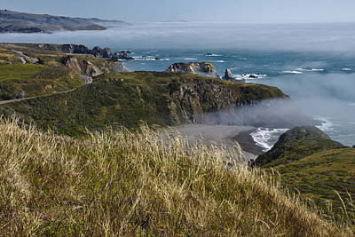 Photograph - Hwy 101 by Wes and Dotty Weber
