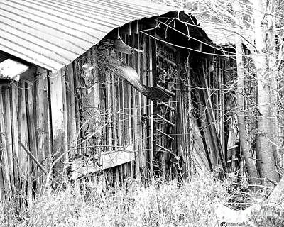 Photograph - Hwy 61 La Shed by Lizi Beard-Ward