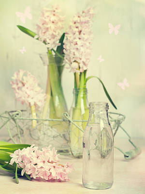 Hyacinths Wall Art - Photograph - Hyacinth Arrangement by Amanda Elwell