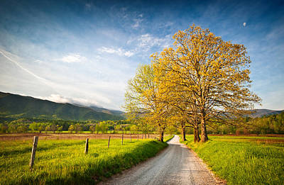 Hyatt Lane Cade's Cove Great Smoky Mountains National Park Art Print