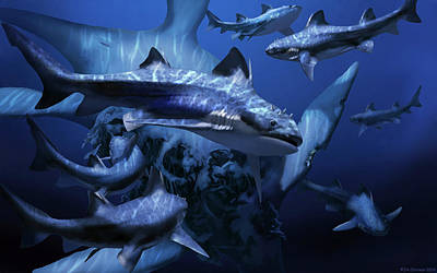 Paleozoology Photograph - Hybodus Fraasi Shark by Jaime Chirinos
