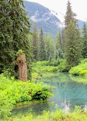 Photograph - Hyder Alaska by Lisa Dunn