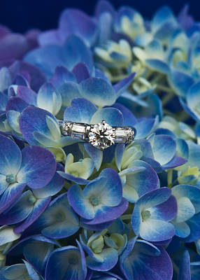 Diamond Ring Photograph - Hydrangea And Engagement Ring by Douglas Barnett