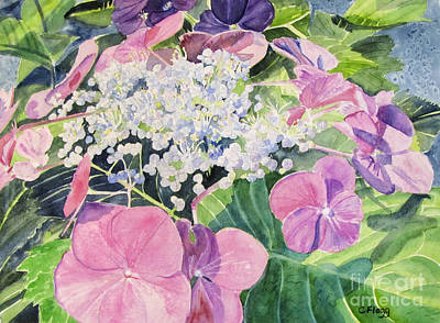 Painting - Hydrangea Blooming by Carol Flagg