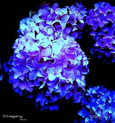 Photograph - Hydrangea by Greg Moores