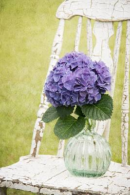 Photograph - Hydrangea II by Mary Hershberger