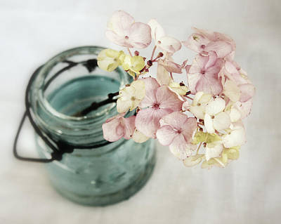 Art Print featuring the photograph Hydrangea In Vintage Robin's Egg Jar by Brooke T Ryan