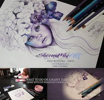 Wip Drawing - Hydrangea -work In Progress by Sheena Pike