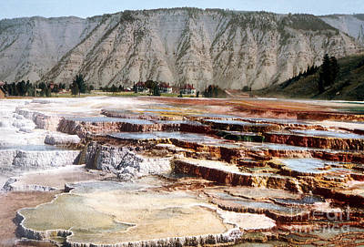Photograph - Hymen Terrace Yellowstone National Park by NPS Photo Detroit Photographic Co