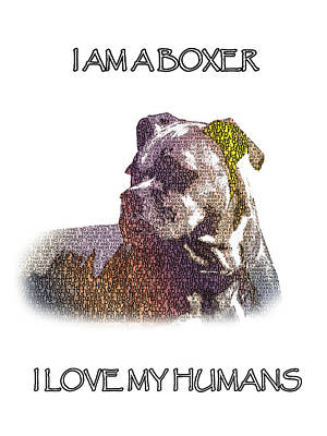 Photograph - Dog - Boxer - Pet - I Am A Boxer-2 by Barry Jones