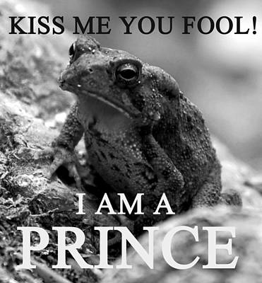 Prince Charming Photograph - I Am A Prince by David Lee Thompson