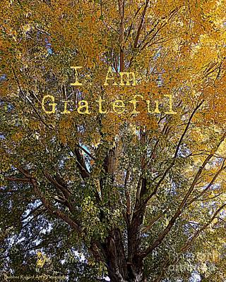 Photograph - I Am Grateful Affirmation by Bobbee Rickard
