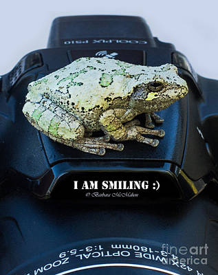 Photograph - I Am Smiling by Barbara McMahon