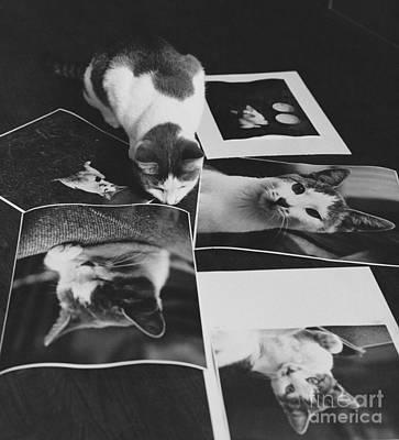 I Am So Photogenic Art Print by Suzanne Szasz