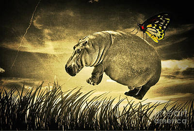 Hippopotamus Mixed Media - I Believe I Can Fly by Binka Kirova