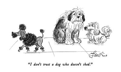 Shed Drawing - I Don't Trust A Dog Who Doesn't Shed by Edward Frascino