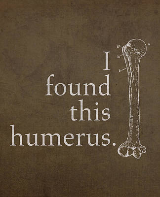 Humor Mixed Media - I Found This Humerus Humor Art Poster by Design Turnpike