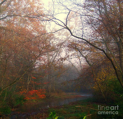 Photograph - I Have Color by Scott B Bennett