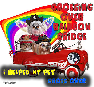 Digital Art - I Helped My Pet Cross Rainbow Bridge by Kathy Tarochione