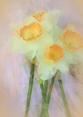 One Of A Kind Photograph - I Love The Daffodils... by The Art Of Marilyn Ridoutt-Greene