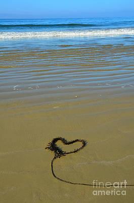 Photograph - I Love The Ocean by Debra Thompson