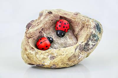 I Love You - Says Ladybugs Art Print by Gynt