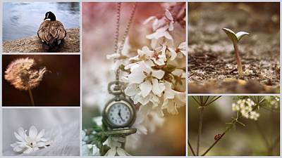 Photograph - I Miss Spring by Stephanie Hollingsworth