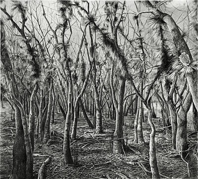 If Not For These Trees I Could See The Forest Art Print