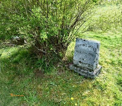 Photograph - I O O F Alder Cemetery 5 by Sadie Reneau