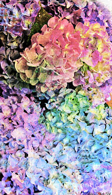 Photograph - I Phone Case / Wall Art - Multi Colored Hydrangeas by Debbie Portwood