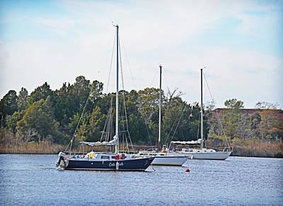 Photograph - I Saw Three Ships by Linda Brown