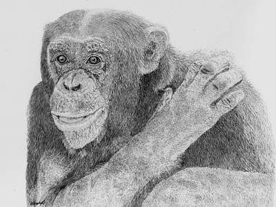 Chimpanzee Drawing - I See You by Wendy Brunell