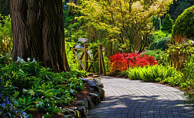 Photograph - I Walk Through The Garden Alone by Jordan Blackstone
