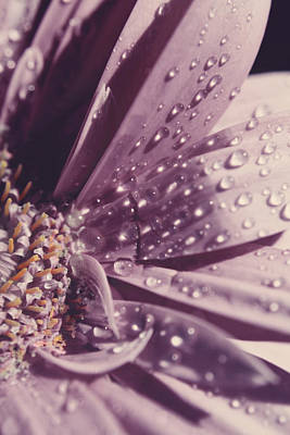 Water Droplets Photograph - I Was Crying by Laurie Search