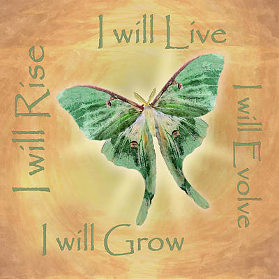 Digital Art - I Will by Deborah Smith