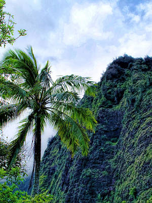 Photograph - Iao Valley 13 by Dawn Eshelman