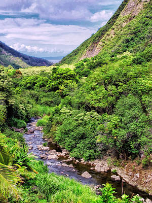 Photograph - Iao Valley 14 by Dawn Eshelman