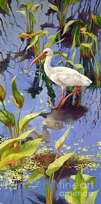 Wetland Painting - Ibis Deux by Laurie Hein