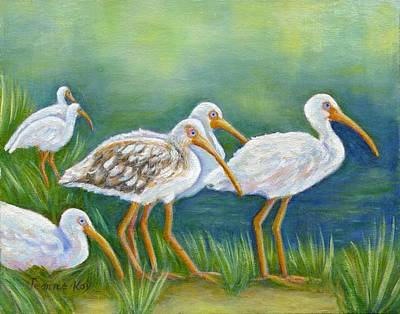 Ibis Flock With Juvenile Art Print
